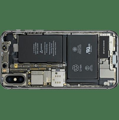 phone-back-vertical